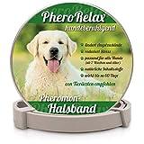 PheroRelax beruhigendes Halsband für Hunde I Natürliches Beruhigungsmittel für Hunde mit Pheromonen bei Angst, Stress und Aggressivität I 60Tage Wirkzeit I Welpen und Erwachsene Hunde