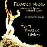 Fuego - Guitarra Flamenca