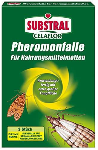 Celaflor 1396 Pheromonfalle für Nahrungsmittelmotten, Mottenfalle für Lebensmittelmotten, 3 Stück