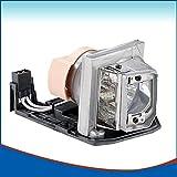LOUTOC Replacement Projector Lamp BL-FP230D SP.8EG01GC01 for P-VIP 230/0.8 e20.8, for OPTOMA HD20 HD23 TX612 TX612-3D GT750E