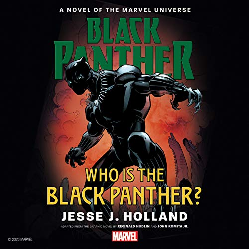 Who Is the Black Panther? cover art