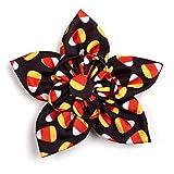The Worthy Dog Halloween Costume Candy Corn Pattern Designer Flower for Pet Dog Cat 23958-4258SM