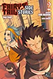 Fairy Tail - Side Stories T02 : Road Knight