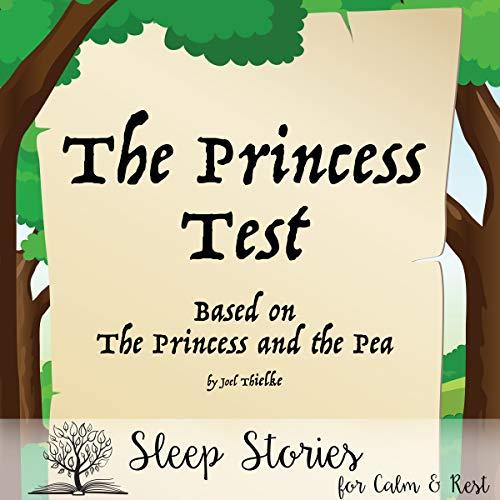 The Princess Test audiobook cover art
