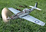 maxflite.de P-51 Mustang Airplane Wind Wheel/Spinner, Propeller Turns in Wind, Gardendecoration - Stainless Steel
