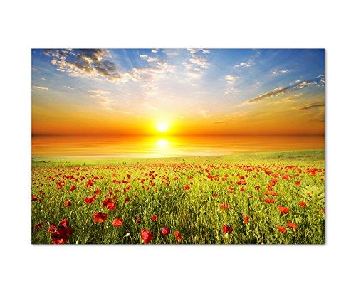 120x80cm - Fotodruck auf Leinwand und Rahmen Feld Gras Mohnblumen Himmel Sonne - Leinwandbild auf Keilrahmen modern stilvoll - Bilder und Dekoration