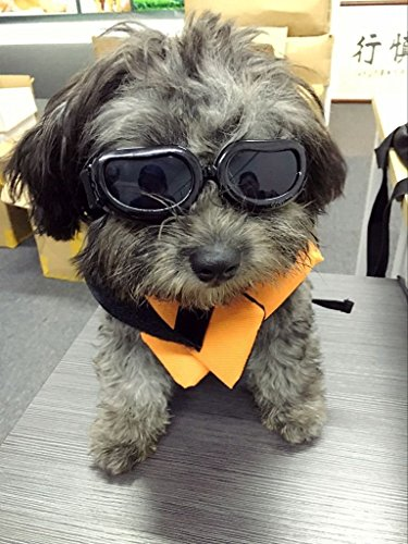 Dog Goggles - Small Dog Sunglasses Waterproof Windproof UV Protection For Doggy Puppy Cat - Black