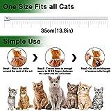 Zoom IMG-2 collare antipulci per gatti 100