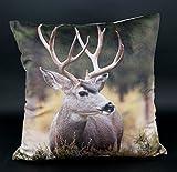 Design Kissenhülle mit hochwertigem Fotodruck Digitaldruck auf super weicher Velour Qualität in...