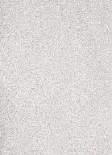 Erfurt Rauhfaser 20 Großrolle fein weiss (Profiqualität) Länge:125 m/Breite:0,75 m für ca. 93,7 m²