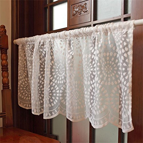 ZHH Embroidery Semi Sheer Lace Curtain Kitchen Cafe Dining Room Window Valances 17 by 59-Inch, White