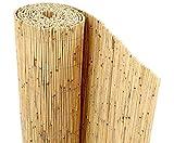 Bambus-Discount Schilfrohrmatte Beach als Balkon Sichtschutz mit 80 x 600cm - Sichtschutzmatte Schilfmatten Sichtschutz