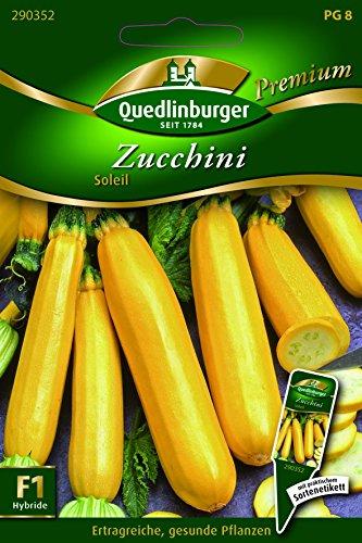 Zucchini Soleil - Cucurbita pepo L. QLB Premium Saatgut Zucchini