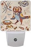 Paquete de 2 lámparas LED de luz nocturna para otoño con sensor de atardecer a amanecer para dormitorio, baño, pasillo, escaleras, 0,5 W, Reino Unido Jack