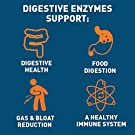 Dr. Tobias Digestive Enzymes Supplement, 60 Capsules #4