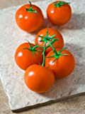 Organic Greenhouse Red On-The-Vine Tomatoes, Fresh Produce, 1 pound