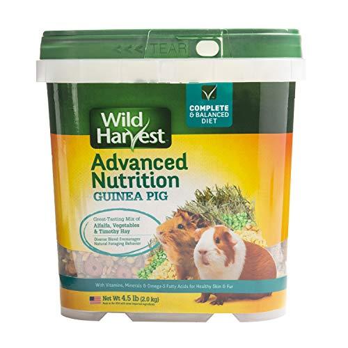 Wild Harvest Wh-83545 Wild Harvest Advanced Nutrition Diète pour cochons d'Inde, 2 kg