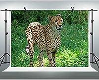 ZPCジャングルサファリ背景7x5ftチーター野生動物緑の植物の背景写真の赤ちゃん子供動物テーマパーティーの装飾ビニールの背景スタジオ壁画小道具481