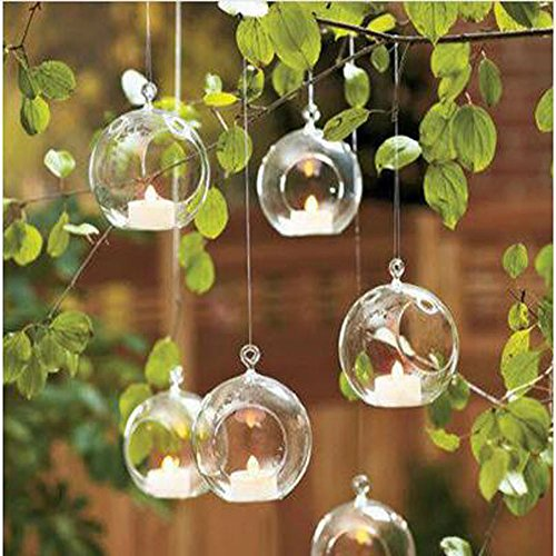Small transparent hanging glass terrarium
