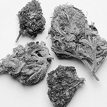 Bad Weed Trip