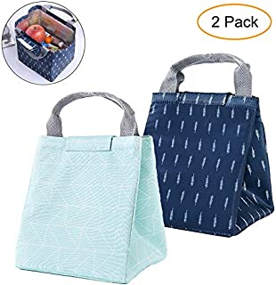 GOTONE 2 Pack Insulated Lunch Bags, Work Travel Picnic School Bento Lunch Bag - Durable & Waterproof Lunch Organizer Lunch...
