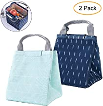 GOTONE 2 Pack Insulated Lunch Bags, Work Travel Picnic School Bento Lunch Bag - Durable & Waterproof Lunch Organizer Lunch Tote for Men, Women and Kids(Dark Blue, Green)