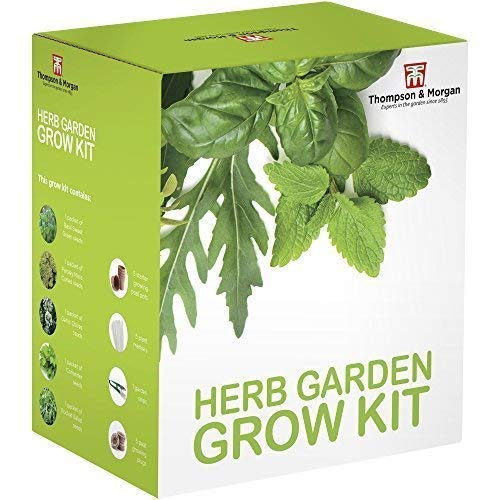 Herb Garden Seed Growing Kit Gift Box - 5 Traditional Tasty Herbs to Grow;...