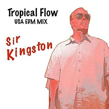 Tropical Flow  (USA EDM Mix)