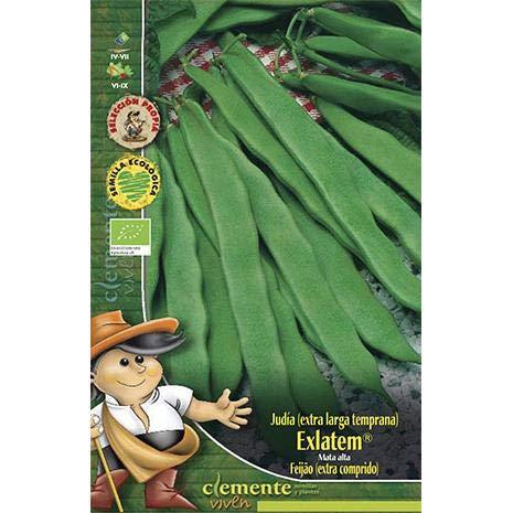 Semillas ecológicas de Judia Exlatem