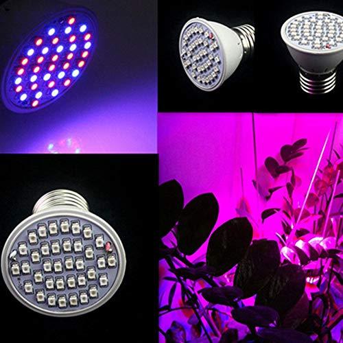 HINK 3W 36 LED Grow Light Veg Flower Indoor Plant Hydroponics Full Spectrum Lamp LED light Onsale