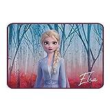 Disney 046678 Frozen 2 - Alfombra (40 x 60 cm, 750 g), Multicolor