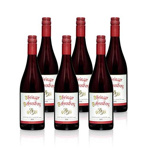 Spätburgunder - Ihringer Fohrenberg 2015 | Rotwein aus Deutschland | Trocken & Rot | WBK Glatt | Samtig & Kräftig im Geschmack (6 x 0,75l)