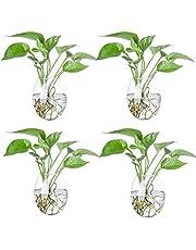 Jarrón de cristal para colgar en la pared, terrarios, macetas, burbujas de pared, soportes de plantas, jarrones de cristal para plantas de aire, decoración de pared, 4 piezas (forma de ejemplo)