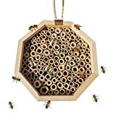 Caseta de abeja de madera, perfecta para el hogar para abejas, mariquitas, mariposas, regalos para jardineros, 15 x 15 x 9 cm, hexagonal.