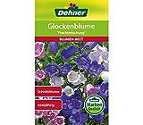 Dehner Blumen-Saatgut, Glockenblume, 'Prachtmischung', 5er pack (5 x 1 g)