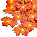 Lichterkette Herbst, 3m 30 Led Herbst Dekoration, HerbstbläTter Deko, Ahornblatt Lichterketten für Türrahmen Landhaus Garten TreppengeläNder, Tischdeko Fensterdeko Erntedank Thanksgiving Halloween