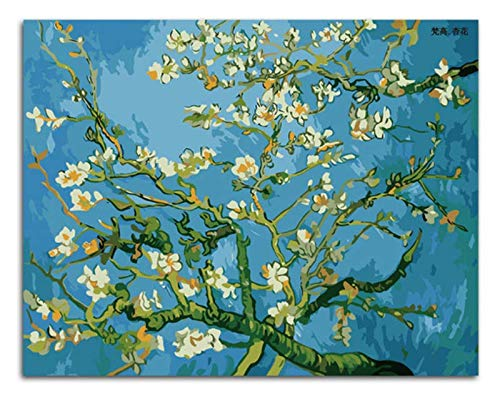 Flores De Almendra Pintura Por Números Impresión Abstracta Coloración Por Números Con Marco 40x50cm