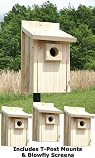 BestNest Stokes Bluebird House Package with T Post Adapters