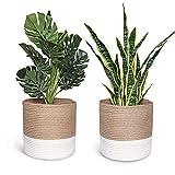 2 cestas de plantas para macetas de 25 cm, organizador de almacenamiento rústico, para decoración del hogar, estilo nórdico, 27 x 27 cm (color caqui, no planta)