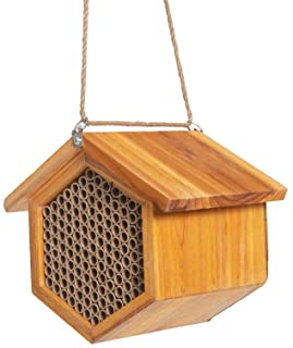 POLLIBEE Mason Bee House - Handmade Natural Wooden Bee Hive Coated with Wax for Water-Proof and Long Service Life - Attrac...