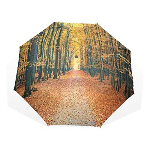 LASINSU Regenschirm,Wald romantische Gasse Wald drucken,Faltbar Kompakt Sonnenschirm UV Schutz Winddicht Regenschirm