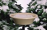 API Heated Deck Mounting Bird Bath Heated Bird Bath with EZ-Tilt Deck Mount and 2 ft Pole, 20 in (Item No. 14B)