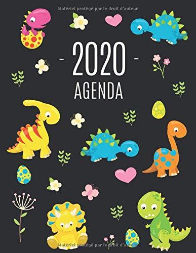 Dinosaure Agenda 2020: Planificateur Annuel | Avec Calendrier 2020 (12 Mois)
