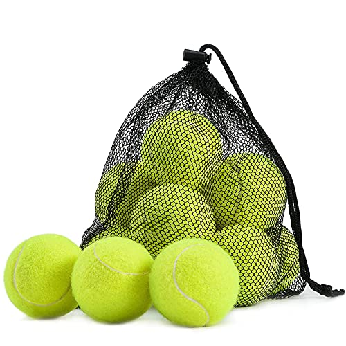 SPICOM Pelota de tenis de mesa para la práctica Juguetes de perro Lanzador Indestructible Tour Juegos deportivos con bolsa de transporte de malla (12)