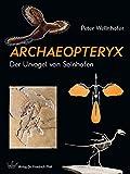Archaeopteryx: Der Urvogel von Solnhofen - Peter Wellnhofer