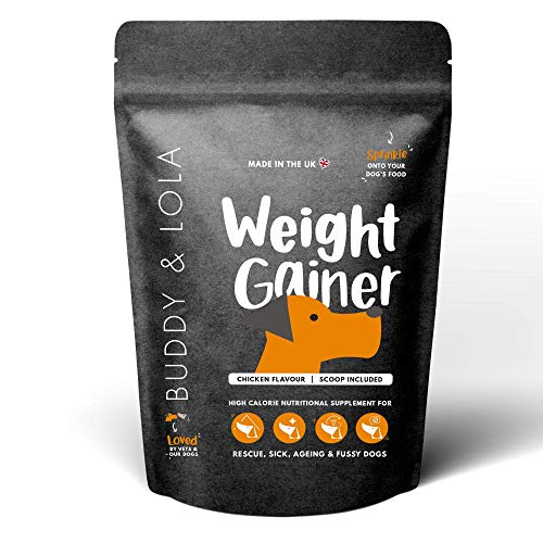 Buddy & Lola Dog Weight Gainer Supplement - Great for Fussy Eaters, Helps Build Muscle, Aids Recovery From Injury - A Must Have For Rescue And Re-homed Dogs Who Need to Put on Weight