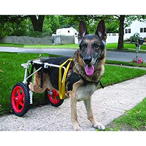 SUNZ Hunderollstuhl Behinderte Haustier Rollstuhl Gehhilfe Hundegehilfe Rollwagen Hunderollwagen (FüR Haustiere Von 1,5-55 Kg) Frei Verstellbare GrößE GeläHmt Behinderter Hund(L)