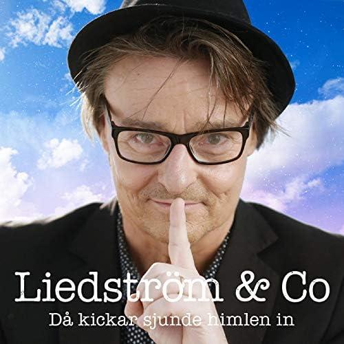 Liedström & Co