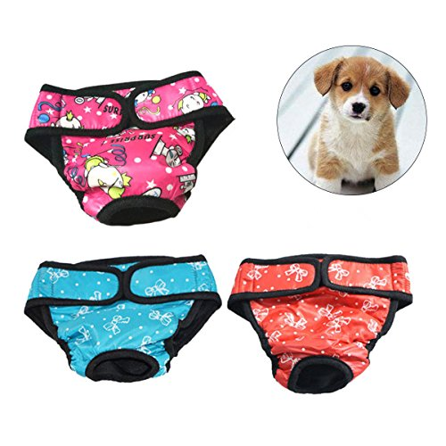 UEETEK 3 PCS perro de mascota pañal sanitario pantalones fisiológicos pantalones cortos femeninos pantalones menstruación ropa interior tamaño XS