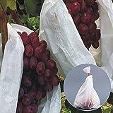 Bolsas protectoras para frutas, malla para el control...